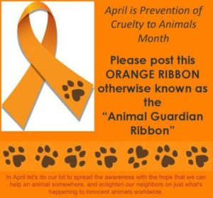 """Go Orange"" in April for the Animals"""
